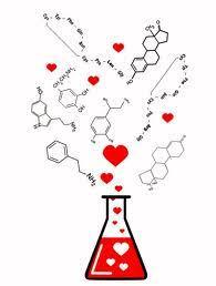 Resultado de imagem para química da paixão