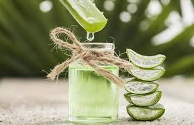 aloe vera juice for hair benefits and
