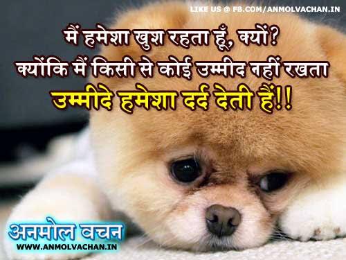 umeed status in hindi