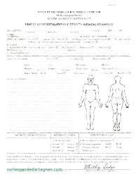Autopsy Report Template Medium To Large Size Of Sample