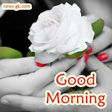 good morning good morning images