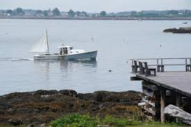 <b>Summer</b> resident killed by great <b>white</b> in Maine's first fatal <b>shark</b> ...