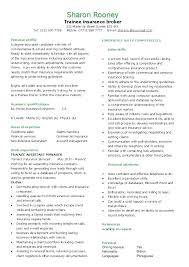 Job Resume Summary Examples Sample Personal Profile For Template