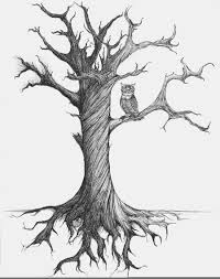 Old tree drawing 24