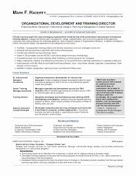 American Resume Best It Help Desk Resume Classy Developer Resume Template Inspirational