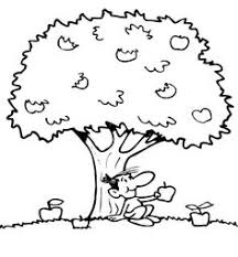 apple tree tree color page coloring pages color plate coloring