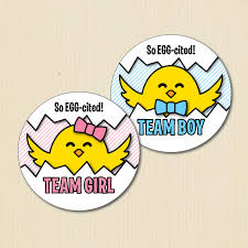 Baby Chick Gender Reveal Party Stickers Team Boy Team Girl Spring Baby Shower Labels Easter Egg Cited He Or She Team Pink Team Blue