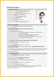 9 Example Of Curriculum Vitae For Job Application Bursary Cover