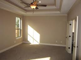tray ceiling rope lighting. Double Tray Ceiling Crown Rope - Google Search Lighting R