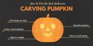 pumpkin carving tools for kids. how to pick the best pumpkin for a joack-o-lantern carving tools kids p