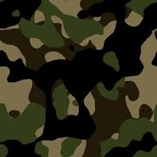 Military Camouflage Patterns New MILITARY CAMOUFLAGE PATTERNS Camouflage Pinterest Military