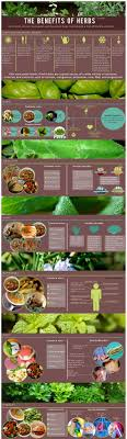 Kent Medicine Cabinet 17 Best Images About Herb Cabinet On Pinterest Herbs Garden