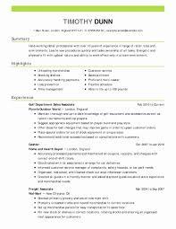 Finance Executive Resume Summary Lovely Model Resume Template