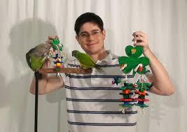 shamrock clover parrot toys