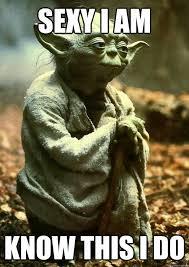Hustle Everyday I Do Star Wars Memes Yoda Sprüche Sprüche