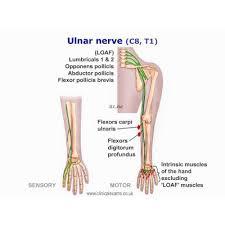 ulnar nerve lesion