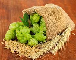 Mosaic Hops The Fruity Hop Variety That Changed Craft Beer
