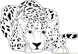 Small Picture Cheetah Car Coloring Pages Coloring Coloring Pages