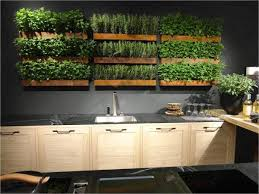 indoor-herb-garden-ideas-image-13