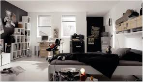 teenage guy bedroom furniture. Bedroom Furniture : Teen Boy Living Room Ideas With Fireplace And Tv Toilet Storage Unit Teenage Guy