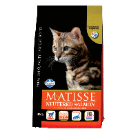<b>Matisse Neutered Salmon</b>