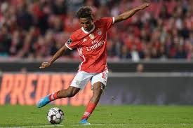 Gedson Fernandes Joins Tottenham Hotspur on 18-Month Loan ...