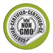 essay gmo essay conclusion genetically modified food essay thesis essay genetically modified food essay thesis gmo essay conclusion