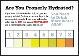 Safety Labels Are You Properly Hydrated