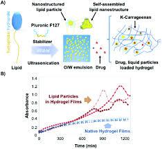 biodegradable liposome encapsulated hydrogels for biomedical image file c5bm00481k f13 tif