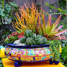 Small Picture The 25 best Mexican patio ideas on Pinterest Spanish style
