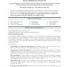 Digital Marketing Resume Template Best Digital Marketing Resume