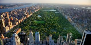 International Day of Forests 2018: <b>Cities</b> with the most <b>trees</b> ...