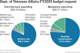 Explaining The Vas Size And Scope In Five Charts