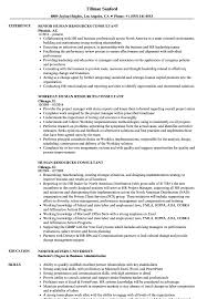 Sample Experienced Hr Professional Consultant Resume Human Resources Consultant Resume Samples Velvet Jobs 17