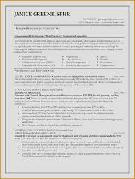 Lovely Professional Resume Writers Dallas Sample Pdf Resume Writing