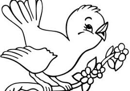 Disegni Di Uccelli Da Colorare Per Bambini Come Disegnare Youtube