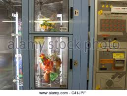 Flower Vending Machine For Sale Adorable A Vending Machine In Japan Selling Batteries Stock Photo 48