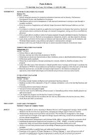 Best Resume Samples IT Delivery Manager Resume Samples Velvet Jobs 43