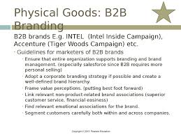 brands and brand management chapter   apple ipod physical goods b2b branding