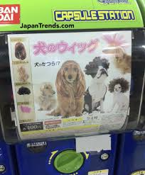 Crazy Vending Machines In Tokyo Adorable Marketing Japan Japan Has Wigs For Dogs
