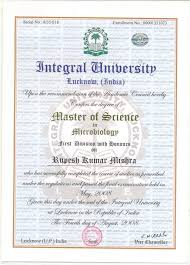 university degree certificate sample global institute academia