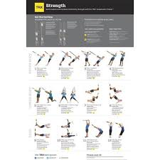 Trx Exercises Chart Trx Exercise Chart Strength
