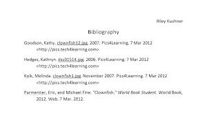 Proper Mla Format Essay Format Of Essay Standard Essay Format Proper