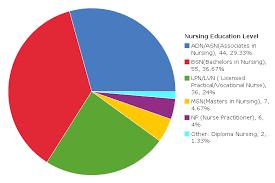Pie Chart Nursing Education Level Of Surveyed Respondents