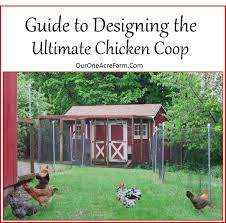 Chicken Coop Designs For 6 Hens Guide To Designing The Perfect Chicken Coop