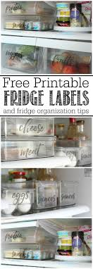 upper kitchen cabinets pbjstories screenbshotb:  free to download refrigerator organizing tips great ways to help you avoid those science projects in the fridge via clean and scentsible kitchen
