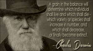 Charles Darwin Quotes II Extraordinary Darwin Quotes