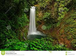 la paz waterfall gardens with green tropical forest
