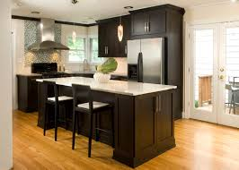 High contrast white wall kitchen with dark wood paneling and cupboards,  paired with white countertops