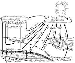 Small Picture Water cycle coloring pages